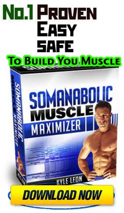 musclemaxmizer